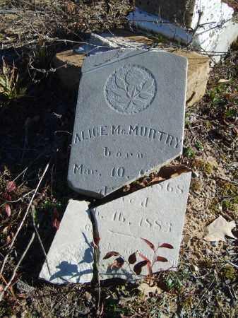 MCMURTRY, ALICE - Stone County, Arkansas | ALICE MCMURTRY - Arkansas Gravestone Photos