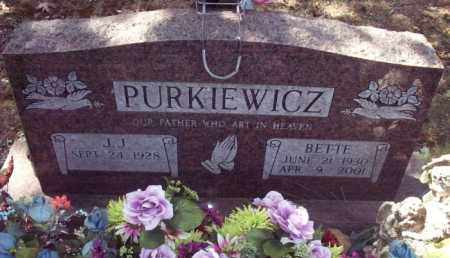 PURKIEWICZ, BETTE - Stone County, Arkansas | BETTE PURKIEWICZ - Arkansas Gravestone Photos