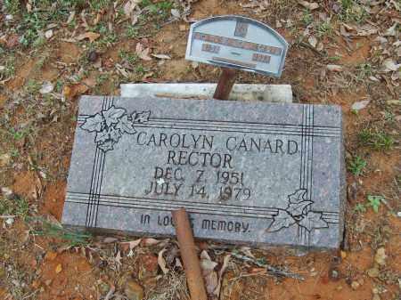 RECTOR, CAROLYN - Stone County, Arkansas | CAROLYN RECTOR - Arkansas Gravestone Photos
