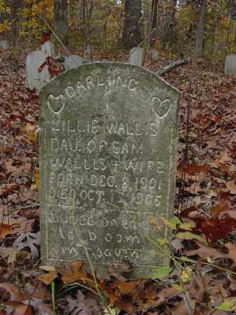 WALLIS, LILLIE - Stone County, Arkansas   LILLIE WALLIS - Arkansas Gravestone Photos