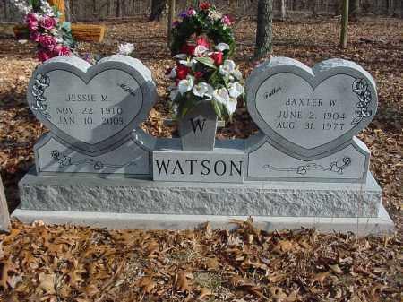 WATSON, BAXTER W. - Stone County, Arkansas | BAXTER W. WATSON - Arkansas Gravestone Photos