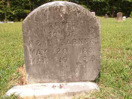BARNES, PETER - Union County, Arkansas | PETER BARNES - Arkansas Gravestone Photos