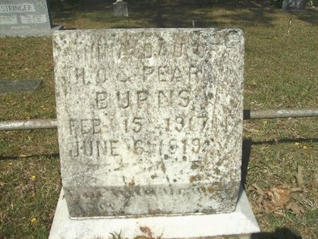 BURNS, NINA - Union County, Arkansas   NINA BURNS - Arkansas Gravestone Photos