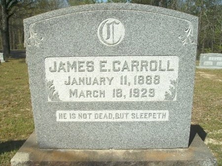 CARROLL, JAMES E - Union County, Arkansas | JAMES E CARROLL - Arkansas Gravestone Photos