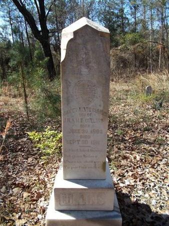 CULLINS, JAMES ALVIS - Union County, Arkansas | JAMES ALVIS CULLINS - Arkansas Gravestone Photos
