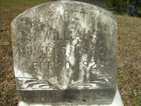 MCWILLIAMS, ELIZABETH - Union County, Arkansas   ELIZABETH MCWILLIAMS - Arkansas Gravestone Photos