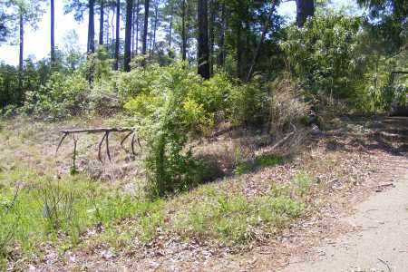*MEEKS CEMETERY OVERVIEW,  - Union County, Arkansas |  *MEEKS CEMETERY OVERVIEW - Arkansas Gravestone Photos