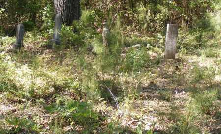 *MEEKS CEMETERY STONES VIEW,  - Union County, Arkansas |  *MEEKS CEMETERY STONES VIEW - Arkansas Gravestone Photos