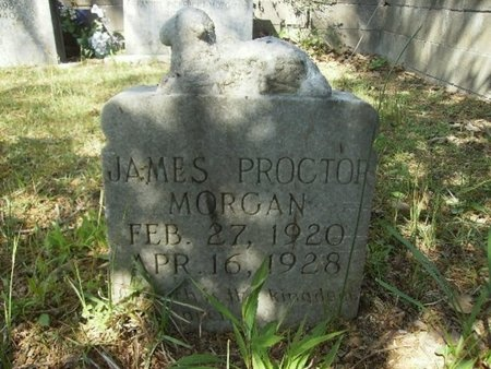 MORGAN, JAMES PROCTOR - Union County, Arkansas | JAMES PROCTOR MORGAN - Arkansas Gravestone Photos