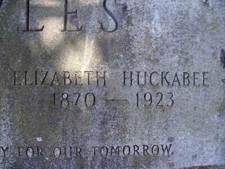 HUCKABEE NOWLES, ELIZABETH (CLOSEUP) - Union County, Arkansas | ELIZABETH (CLOSEUP) HUCKABEE NOWLES - Arkansas Gravestone Photos