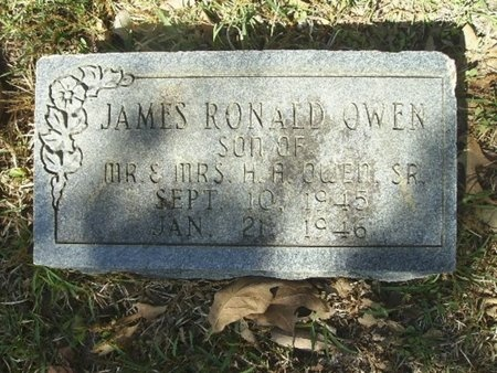 OWEN, JAMES RONALD - Union County, Arkansas | JAMES RONALD OWEN - Arkansas Gravestone Photos
