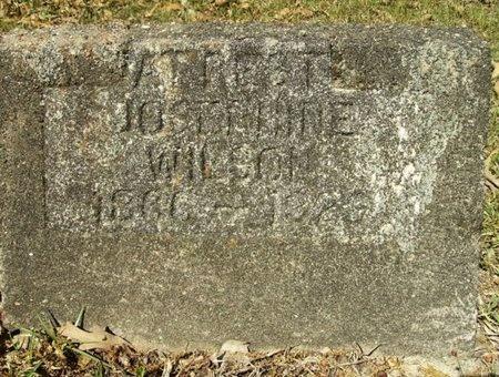 WILSON, JOSEPHINE - Union County, Arkansas | JOSEPHINE WILSON - Arkansas Gravestone Photos