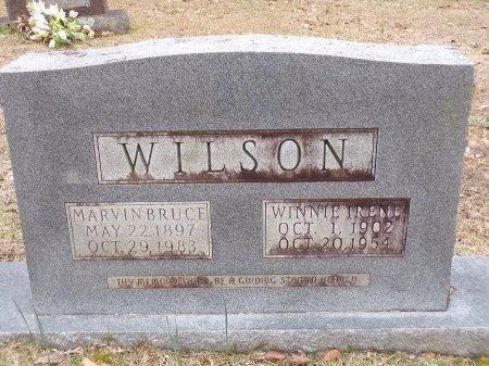WILSON, WINNIE IRENE - Union County, Arkansas | WINNIE IRENE WILSON - Arkansas Gravestone Photos