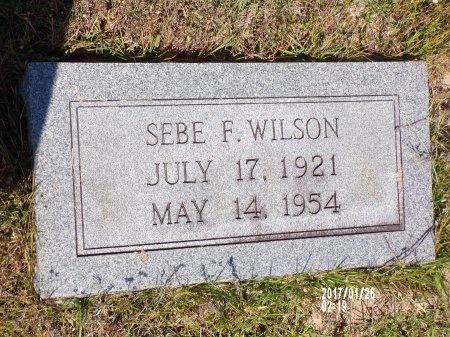 WILSON, SEBE FOWLER - Union County, Arkansas | SEBE FOWLER WILSON - Arkansas Gravestone Photos