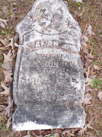 WILSON, SARAH JULIA - Union County, Arkansas | SARAH JULIA WILSON - Arkansas Gravestone Photos