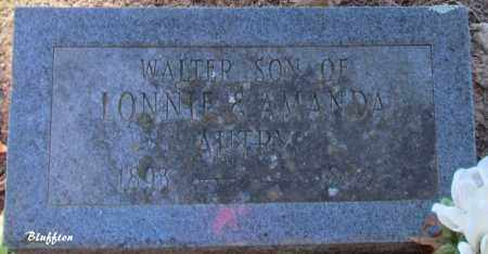 AUTRY, WALTER - Van Buren County, Arkansas | WALTER AUTRY - Arkansas Gravestone Photos