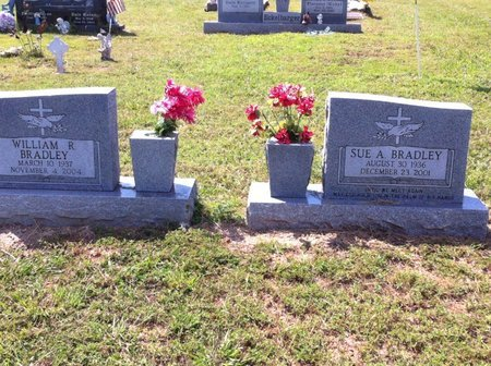 BRADLEY, SUE ANNE - Van Buren County, Arkansas | SUE ANNE BRADLEY - Arkansas Gravestone Photos