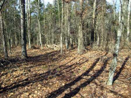 *ROAD,  - Van Buren County, Arkansas |  *ROAD - Arkansas Gravestone Photos