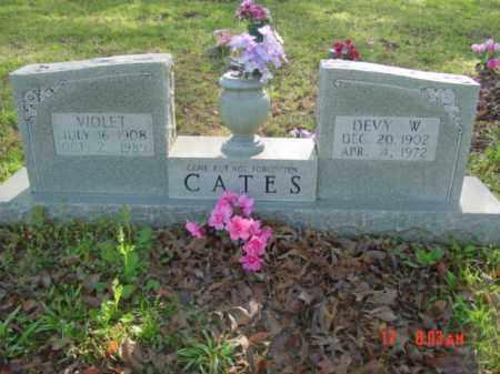 CATES, DEVY W - Van Buren County, Arkansas | DEVY W CATES - Arkansas Gravestone Photos