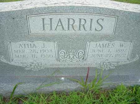 HARRIS, JAMES W - Van Buren County, Arkansas | JAMES W HARRIS - Arkansas Gravestone Photos
