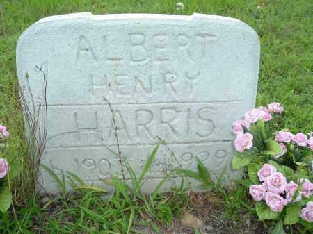 HARRIS, ALBERT HENRY - Van Buren County, Arkansas | ALBERT HENRY HARRIS - Arkansas Gravestone Photos