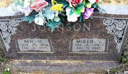 JOHNSON, MOLLIE E - Van Buren County, Arkansas | MOLLIE E JOHNSON - Arkansas Gravestone Photos