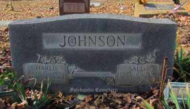 JOHNSON, SALLIE - Van Buren County, Arkansas | SALLIE JOHNSON - Arkansas Gravestone Photos