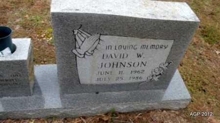 JOHNSON, DAVID W - Van Buren County, Arkansas | DAVID W JOHNSON - Arkansas Gravestone Photos