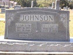 JOHNSON, GEORGE WASHINGTON - Van Buren County, Arkansas | GEORGE WASHINGTON JOHNSON - Arkansas Gravestone Photos
