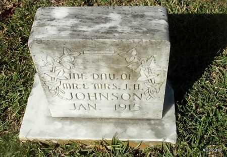 JOHNSON, IDE - Van Buren County, Arkansas | IDE JOHNSON - Arkansas Gravestone Photos