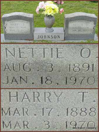 JOHNSON, NETTIE O - Van Buren County, Arkansas | NETTIE O JOHNSON - Arkansas Gravestone Photos