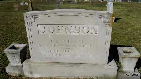 JOHNSON, P L - Van Buren County, Arkansas | P L JOHNSON - Arkansas Gravestone Photos