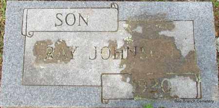 JOHNSON, RAY - Van Buren County, Arkansas   RAY JOHNSON - Arkansas Gravestone Photos