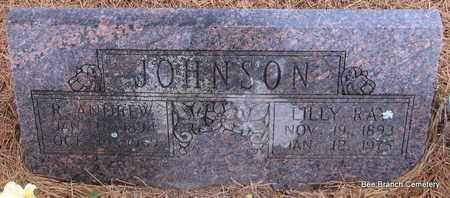JOHNSON, LILLY - Van Buren County, Arkansas | LILLY JOHNSON - Arkansas Gravestone Photos