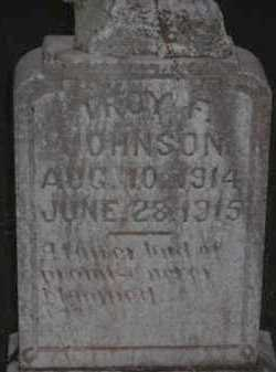 JOHNSON, TROY F - Van Buren County, Arkansas | TROY F JOHNSON - Arkansas Gravestone Photos