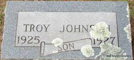 JOHNSON, TROY - Van Buren County, Arkansas   TROY JOHNSON - Arkansas Gravestone Photos