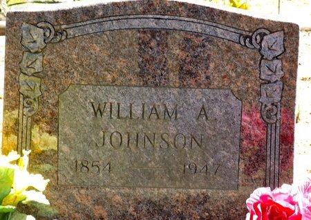 JOHNSON, WILLIAM A. - Van Buren County, Arkansas | WILLIAM A. JOHNSON - Arkansas Gravestone Photos