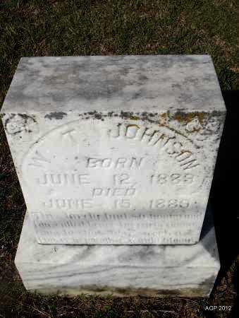 JOHNSON, W T - Van Buren County, Arkansas | W T JOHNSON - Arkansas Gravestone Photos