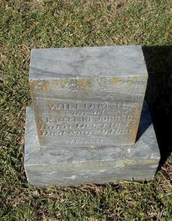 JOHNSON, WILLIAM N - Van Buren County, Arkansas | WILLIAM N JOHNSON - Arkansas Gravestone Photos