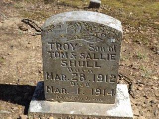 SHULL, TROY - Van Buren County, Arkansas | TROY SHULL - Arkansas Gravestone Photos