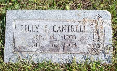 CANTRELL, LILLY F - Washington County, Arkansas   LILLY F CANTRELL - Arkansas Gravestone Photos