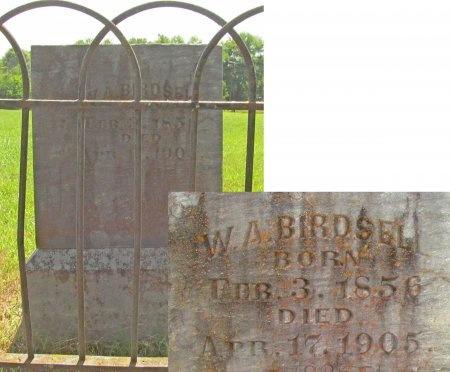 BIRDSELL, W A - Washington County, Arkansas | W A BIRDSELL - Arkansas Gravestone Photos