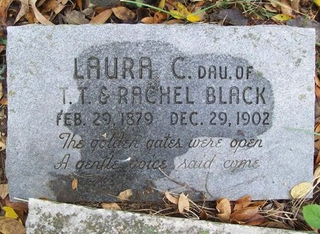 BLACK, LAURA C - Washington County, Arkansas | LAURA C BLACK - Arkansas Gravestone Photos
