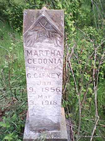 CARNEY, MARTHA CEDONIA - Washington County, Arkansas | MARTHA CEDONIA CARNEY - Arkansas Gravestone Photos