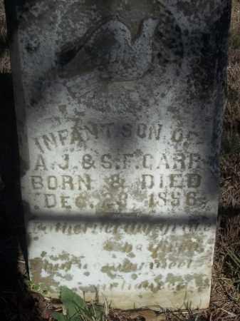 CARR, INFANT SON - Washington County, Arkansas   INFANT SON CARR - Arkansas Gravestone Photos