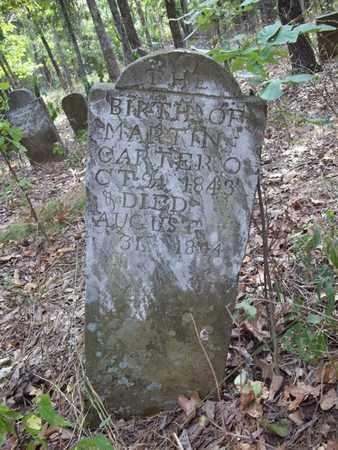 CARTER, MARTIN - Washington County, Arkansas | MARTIN CARTER - Arkansas Gravestone Photos