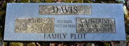DAVIS, CATHERINE - Washington County, Arkansas | CATHERINE DAVIS - Arkansas Gravestone Photos