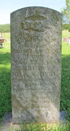FADERER, CORDELIA F - Washington County, Arkansas | CORDELIA F FADERER - Arkansas Gravestone Photos