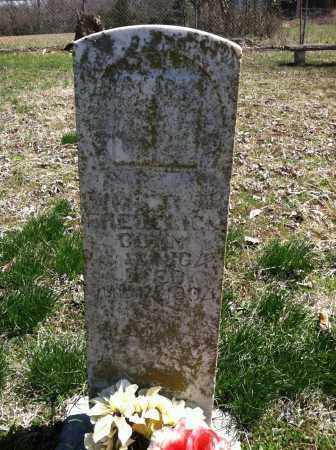 FREDERICK, WILLIAM R - Washington County, Arkansas   WILLIAM R FREDERICK - Arkansas Gravestone Photos