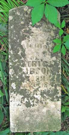 GIBSON, PATRICK - Washington County, Arkansas   PATRICK GIBSON - Arkansas Gravestone Photos